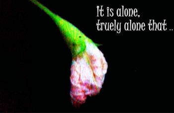 loneliness the positive way -fi
