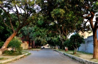 Green boulevard between a school and resident quarters is still the same.
